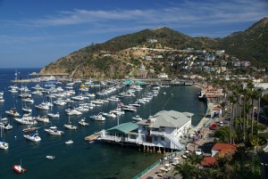 Trip To Catalina Island, California Image